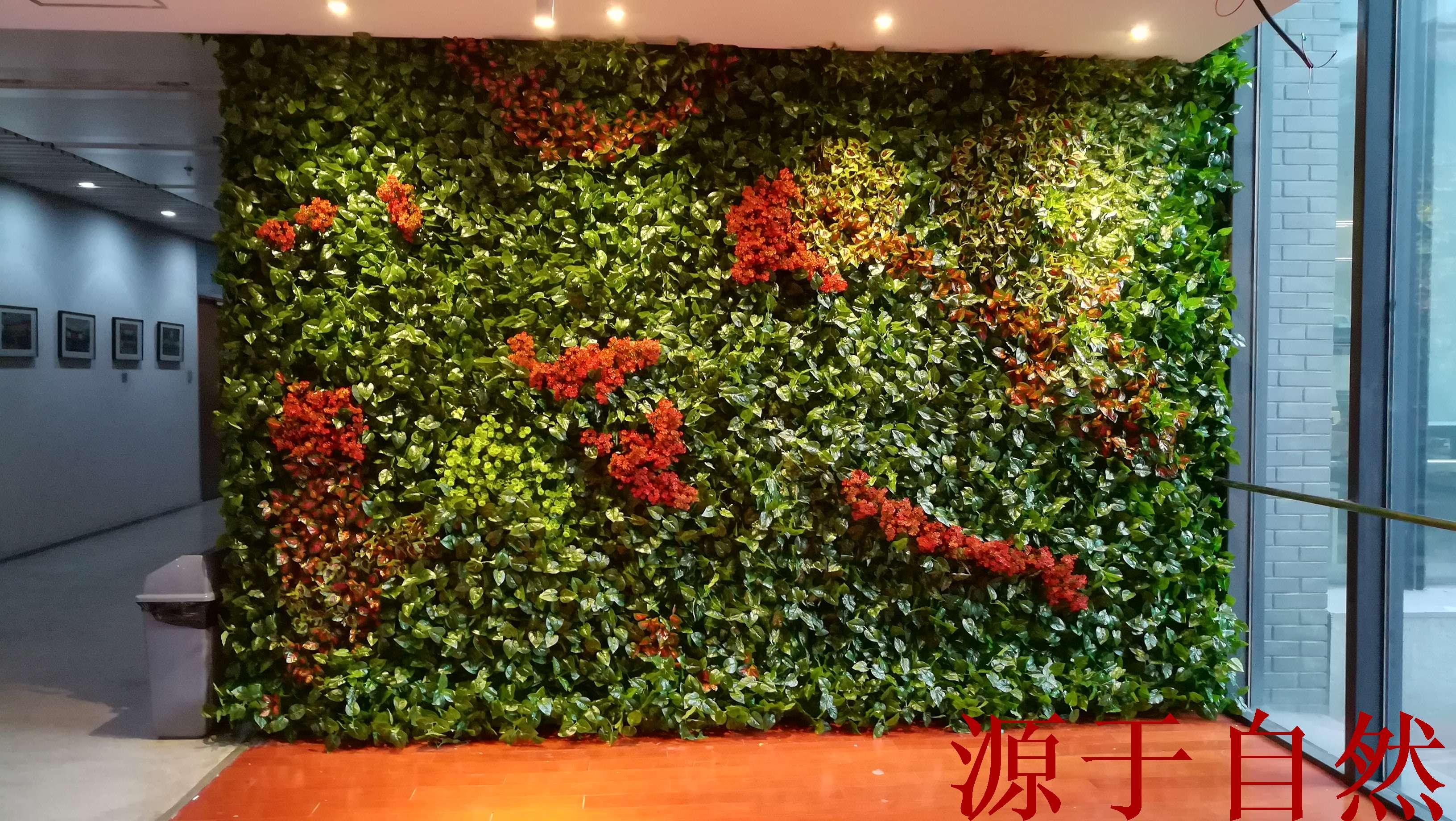 绿色植物墙_植物墙 垂直绿化技术 绿化墙设_藤蔓手绘墙绿色